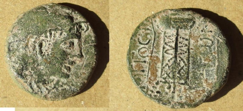 Bronze longostalète Bokios11