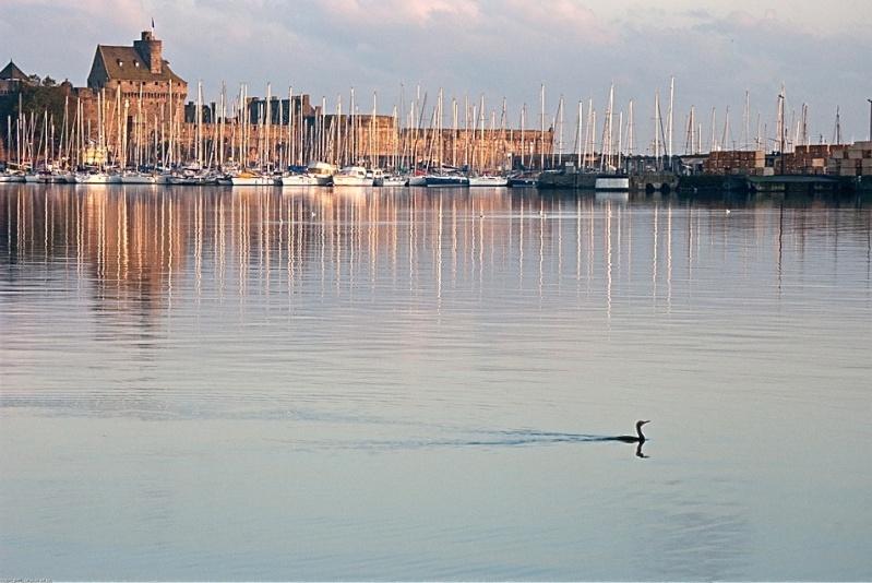 Saint-Malo [La cité Corsaire] - Page 6 Cormor10