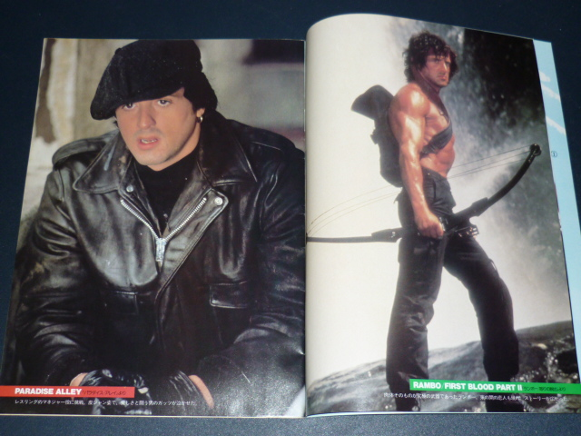 Les livres (Collection slystallone) - Page 6 Sylves13