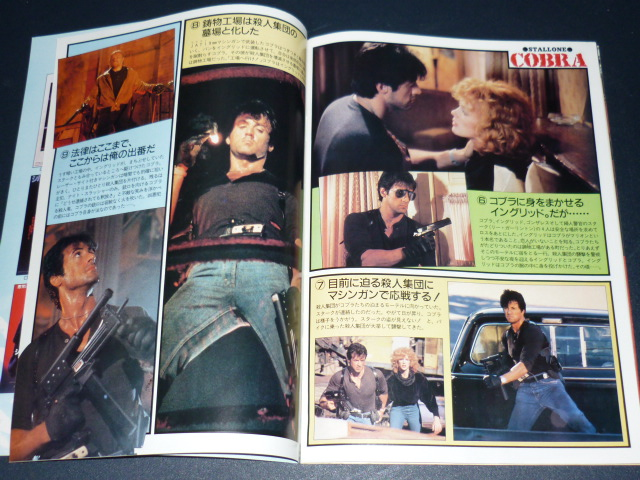 Les livres (Collection slystallone) - Page 6 Sylves18
