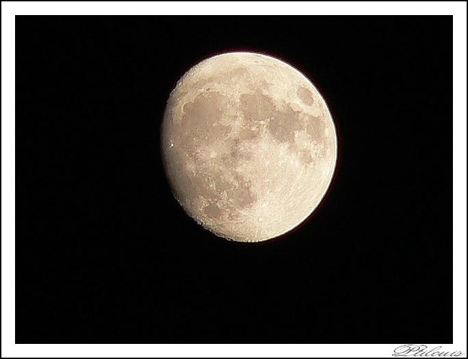 Lune cendré P1060011