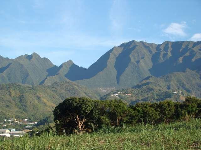 voyage à la Réunion Dsc05010