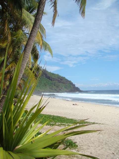 voyage à la Réunion Dsc05512