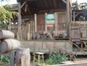 Frontierland  (photos) Fr73hb10