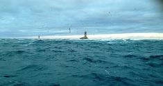 Seabass Rods Fishing Forum 58029210