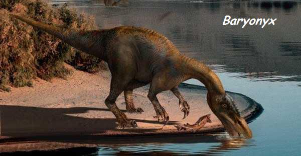 Dinosaures - Page 2 Baryon10