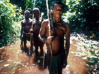 PEUPLES/ETHNIES/COMMUNAUTES Pygmae10