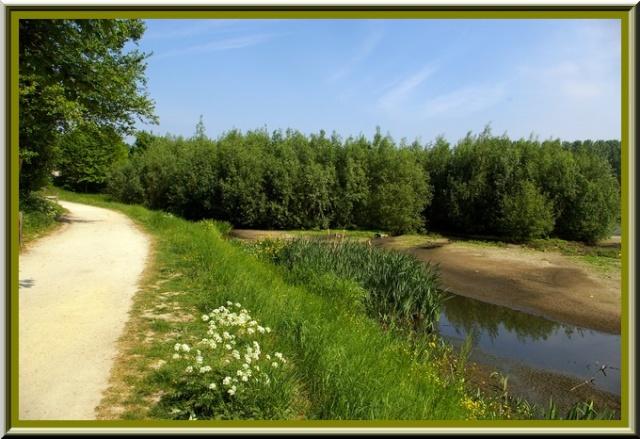 Le parc de Neerpede Anderlecht Bruxelles Sg1l3214