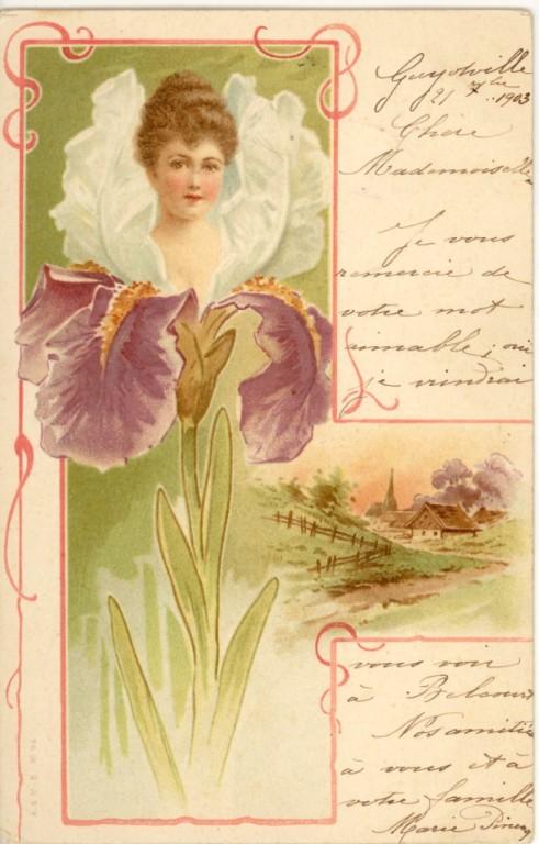 Les iris Iris10