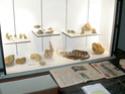 Musée de Montecchio Maggiore (VI) Dscn5211