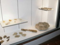 Musée de Montecchio Maggiore (VI) Dscn5314