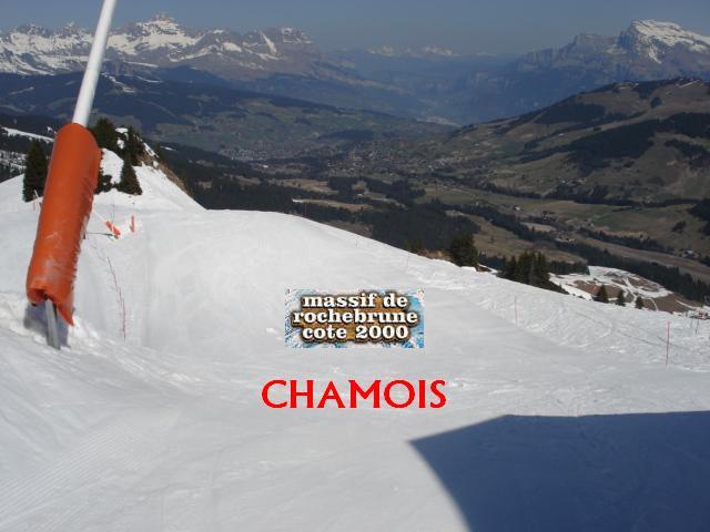 Chamois; Megève Rochebrune Côte 2000 Dsc01415