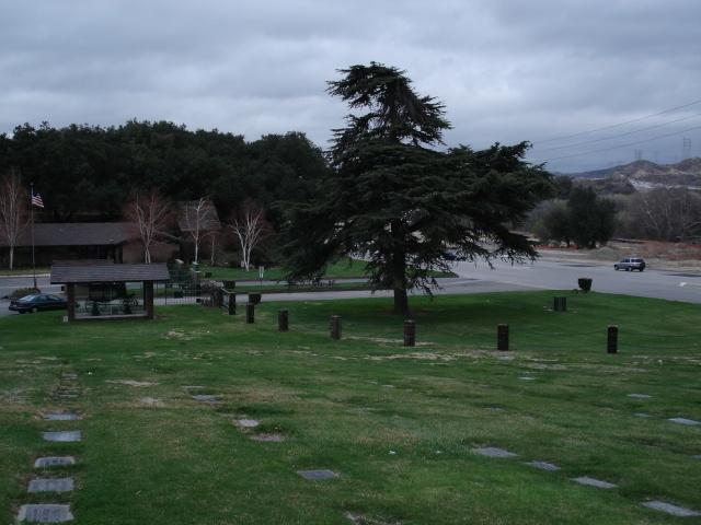 eternal valley  Hommage a Gene Vincent - photos suite Dsc00120