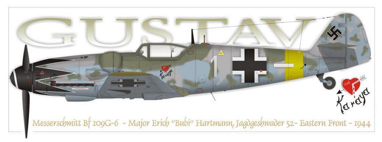 Erich Hartmann Aircra10