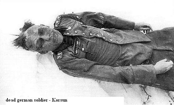 Bataille de Korsun/Tcherkassy - Janvier 1944 Battle17