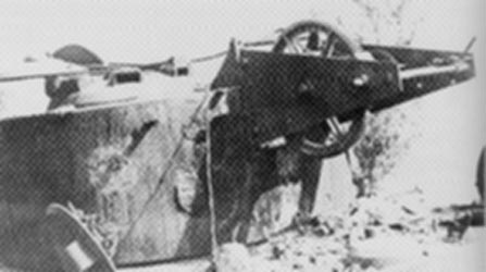 Bergepanzer VI BergeTiger Berget16