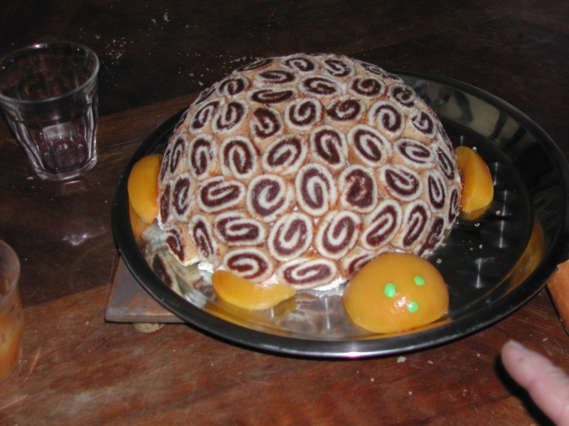 Vos recettes/ trucs pour gâteaux d'anniversaire? Dscn4210