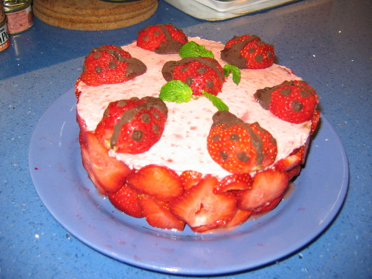torta bubamara Torta_10