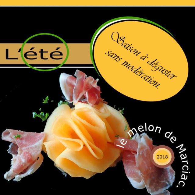 Challenge VISITEURS n° 13 - CITATION Melon10