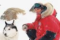 Antartica, prisonniers du froid 18469611