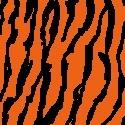 REGLEMENT Bannières Tiger_10