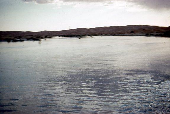 inondations au sahara - Page 2 Img23210