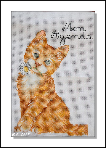 Petit chat roux Flower10