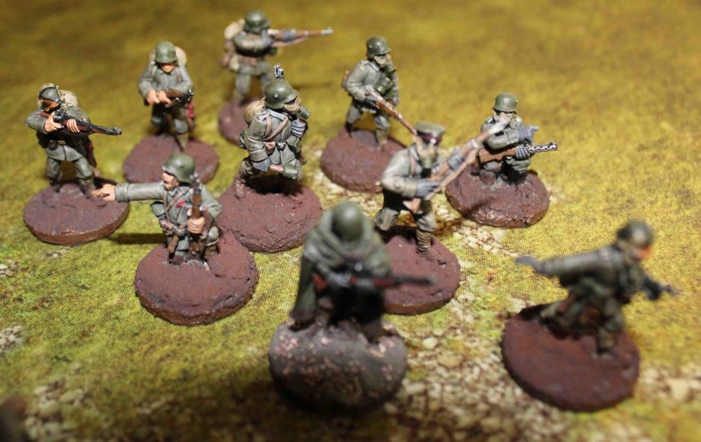 vends armées WW1 (vendu) Sturm_14