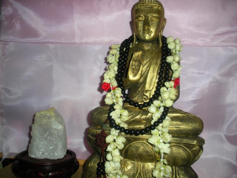 L'essence du bouddhisme – une perspective socio-historique 31109_10