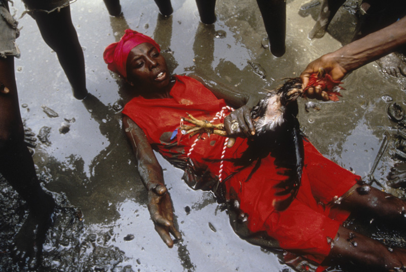 Max Beauvoir chef suprême du vodou haïtien Ph040210