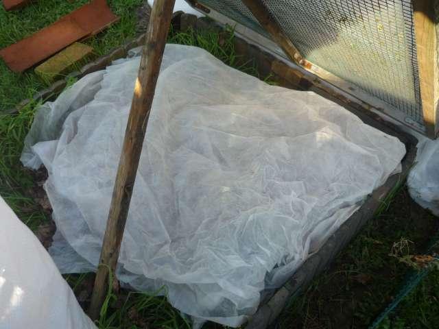 Exemple protection hibernation in natura au Nord de la Loire La_fam18