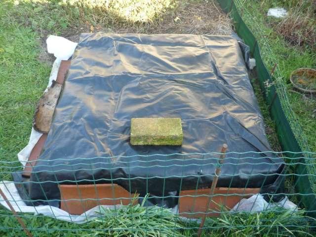 Exemple protection hibernation in natura au Nord de la Loire La_fam21