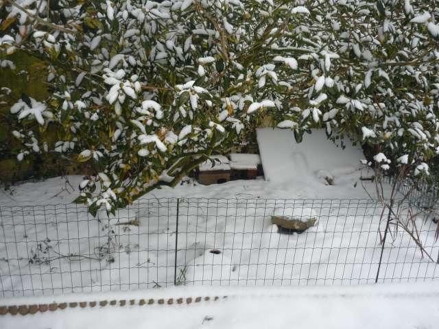 Exemple protection hibernation in natura au Nord de la Loire La_fam39