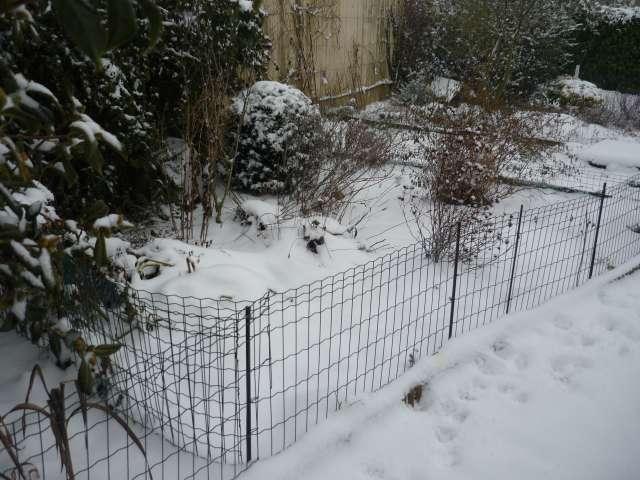 Exemple protection hibernation in natura au Nord de la Loire La_fam40
