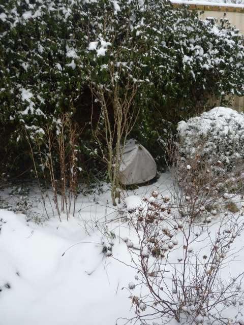 Exemple protection hibernation in natura au Nord de la Loire La_fam43