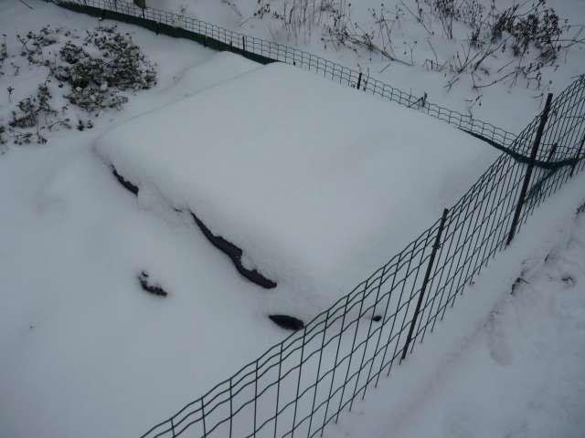 Exemple protection hibernation in natura au Nord de la Loire La_fam44