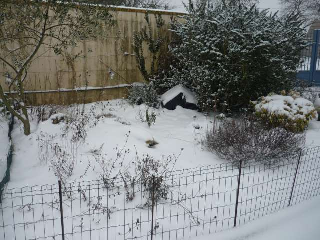 Exemple protection hibernation in natura au Nord de la Loire La_fam49