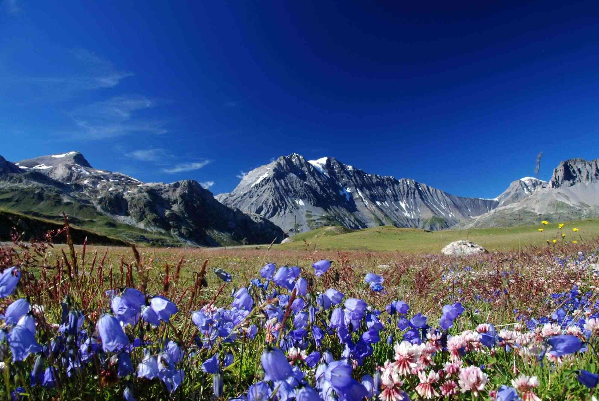 La Route des Grandes Alpes - Page 10 Sans_115