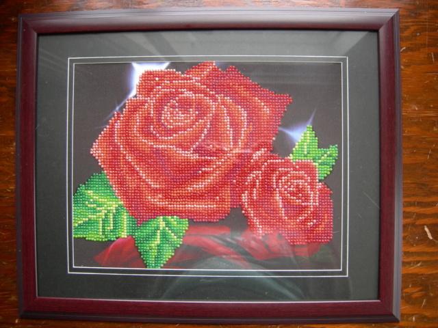 Vos projets de Diamond Painting Dscn2724