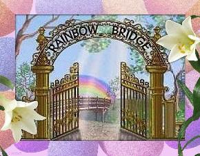The Rainbow Bridge..... Rainbo11