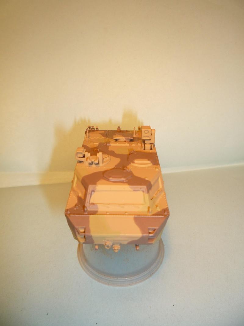 fennek 1/72 revell ISAF P1040916
