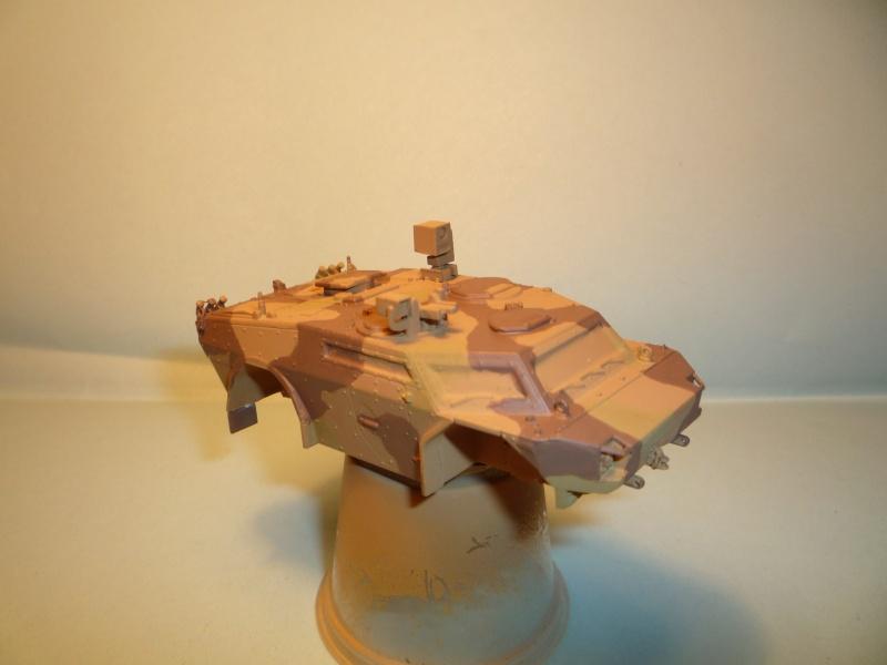 fennek 1/72 revell ISAF P1040917