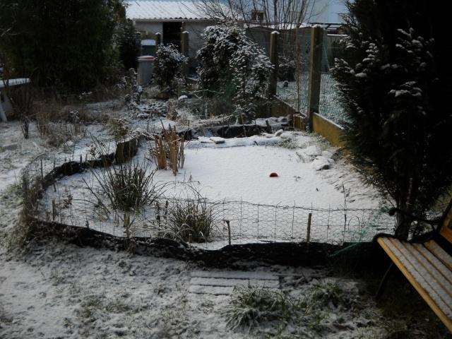 les bassins à tortues en hiver Bassin12