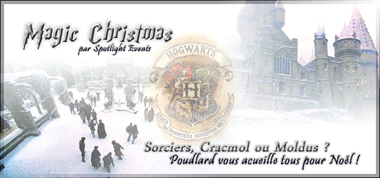 Magic Christmas (Harry Potter convention) 28vyw410
