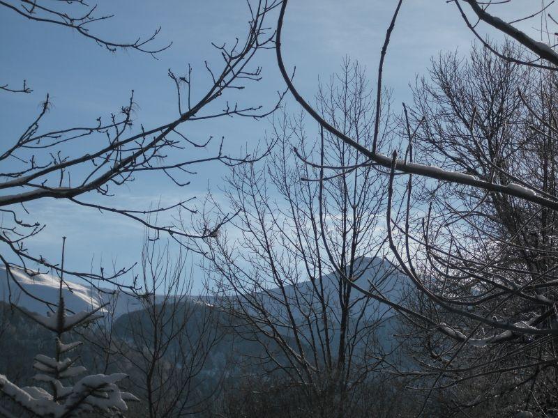 Qq fotos du Cantal - Page 3 12janv10