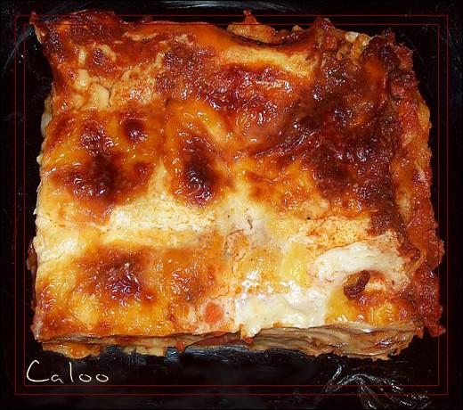 Lasagnes à la viande et aux légumes Lasagn10