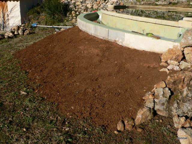 Quelques photos de mon jardin : gros projet 2013 : Evolution Mai 2014 - Page 2 P1030838