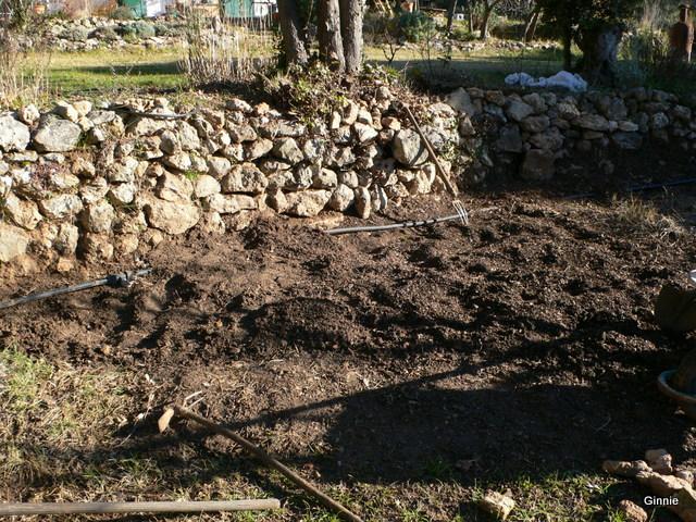 Quelques photos de mon jardin : gros projet 2013 : Evolution Mai 2014 - Page 2 P1030839