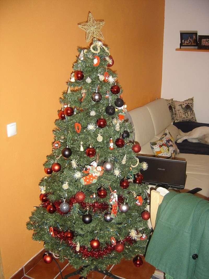 Votação da arvore de Natal Arvore10