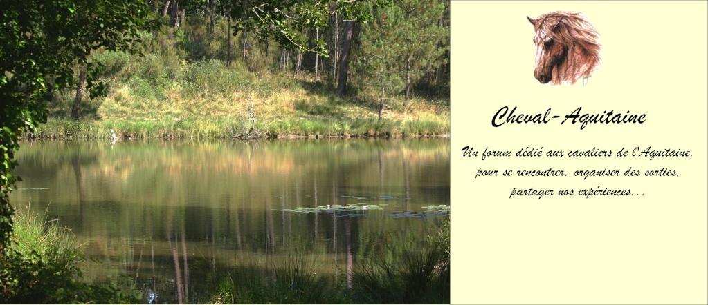 Cheval Aquitaine